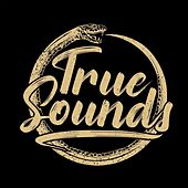 Hen to Pan von TrueSounds