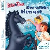 Hörbuch: Der wilde Hengst (Ungekürzt) von Bibi & Tina