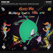 Nothing Hurts Like You (feat. Sam Calver) by Feed Me