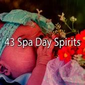 43 Spa Day Spirits von Relajacion Del Mar