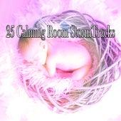 25 Calming Room Stormtracks de Thunderstorm Sleep