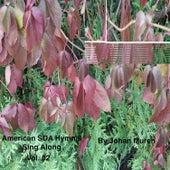American SDA Hymnal Sing Along Vol. 02 by Johan Muren