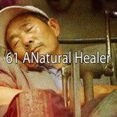 61 A Natural Healer von Relajacion Del Mar