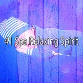 41 Spa Relaxing Spirit by Sounds Of Nature