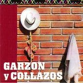 Garzon y Collazos de Garzon Y Collazos