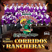 Los Mejores Corridos y Rancheras by La Arrolladora Banda El Limon