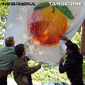 Tangerine by Nebraska