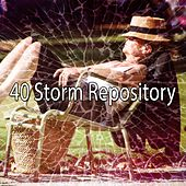 40 Storm Repository by Rain Sounds and White Noise
