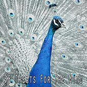 58 Treats for the Mind von Entspannungsmusik