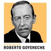 Esenciales de Roberto Goyeneche