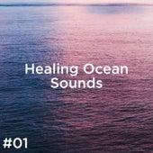 #01 Healing Ocean Sounds de Ocean Sounds (1)