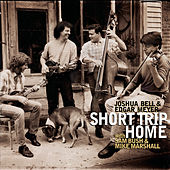 Short Trip Home de Various Artists
