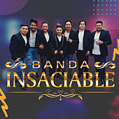 Llegaron Los Indomables de Banda Insaciable