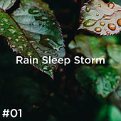 #01 Rain Sleep Storm de Thunderstorm Sound Bank
