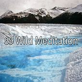 69 Wild Meditation de Deep Sleep Meditation