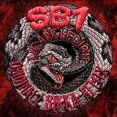 We Are Legion de Sb1