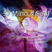 57 Mind & Soul de Exam Study Classical Music Orchestra