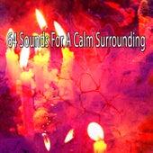 64 Sounds for a Calm Surrounding by Musica Relajante