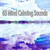 63 Mind Calming Sounds von Guided Meditation