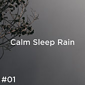 #01 Calm Sleep Rain von Rain Sounds