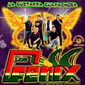 La Guitarra Guapachosa de Fenix