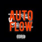 Auto Flow de Remex