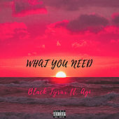 What You Need by Black Tyrax