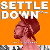 Settle Down by Orion