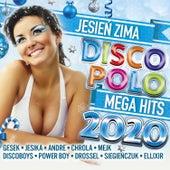 Jesień Zima 2020 de Various Artists