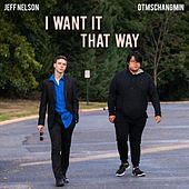 I Want It That Way (feat. Dtmschangmin) by Jeff Nelson