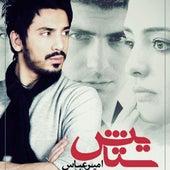 Setayesh by Amir Abbas Golab