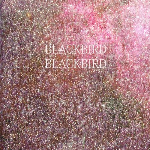 Summer Heart by Blackbird Blackbird