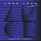 Amor Amor (Remix) de Binomio de Oro de America