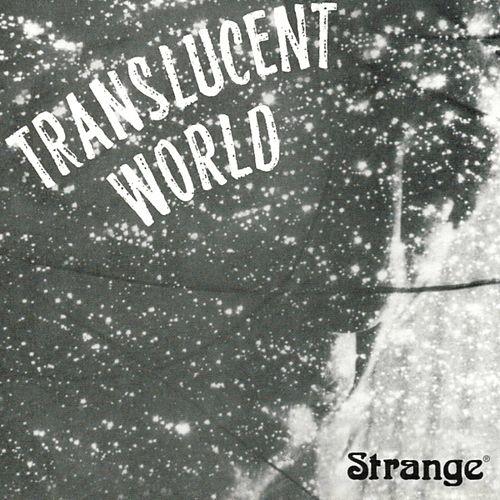 Translucent World by The Strange