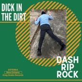 Dick In The Dirt de Dash Rip Rock
