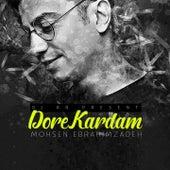 Dore Kardam (Remix) by Mohsen Ebrahimzadeh