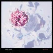 Blossom by Cheryl