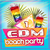 EDM Beach Party, Vol. 1 by Various Artists