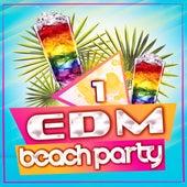 EDM Beach Party, Vol. 1 von Various Artists