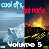Cool dj's, hot tracks - vol. 5 von Various Artists