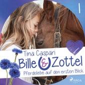 Pferdeliebe auf den ersten Blick - Bille und Zottel 1 (Ungekürzt) von Tina Caspari