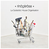 La Guitaristic House Organisation by Rinocerose