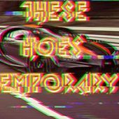 These Hoes Temporary by Young P
