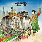 Fu Chronicles de Antibalas