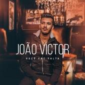 Você Faz Falta de João Victor
