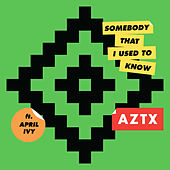 Somebody That I Used To Know de AZTX