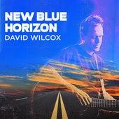 New Blue Horizon de David Wilcox