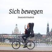 Sich bewegen de Dominik Friedrich