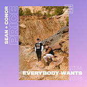 Everybody Wants by Sean and Conor Price