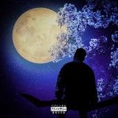 Luna EP by Ardian Bujupi